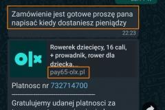 180651556_1406074546405362_2047733726656134042_n